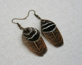 Black grouse feather with brown rooster feather earrings jewellery jewelry