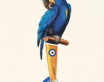Blue Parrot - Limited Edition Print - Tropical, Summer, Blue and Yellow Macaw Illustration - Travel, Bird and Plane Inspired Collage