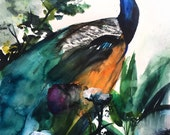 50% Off SALE - Peacock Garden - Bird Art - Gift for Her - Watercolor Painting - 11x14 Giclee Digital Print - Nature - Bird Art - Tropical -