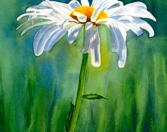 White daisy watercolor, daisies, watercolor painting, original watercolor, shasta daisies, daisy painting, watercolor floral, daisy art