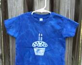 Second Birthday Shirt (3T), Boys Second Birthday Shirt, Girls Second Birthday Shirt, Blue Cupcake Birthday Shirt, Kids Cupcake Shirt