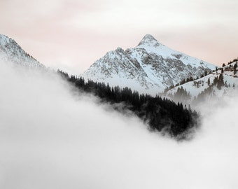 Pink Sky and White Mountains  with Black Forest and White Fog Oregon Mountain photography