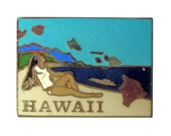 HAWAII STATE vintage lapel cloisonne enamel pin landscape