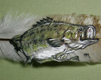Largemouth Bass Hand Painted on Turkey Feather, Framed