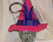 Pink and Purple Witch Hat