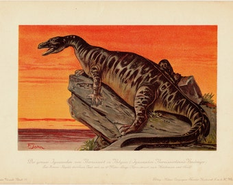1900 Gorgeous DINOSAUR fine lithograph, IGUANODON, 112 years old gorgeous print.