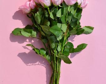 Pink Roses Digital Print