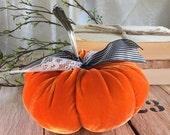 Velvet Pumpkin with vintage silver stem - Fairytale Pumpkin - Halloween Orange - decoration - Thanksgiving - Halloween