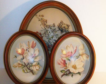 3 Vintage Oval Frames with Floral Prints Magnolias, Howard Schmidt Co and Peter Watson Studios