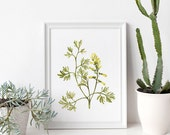 Yellow Wildflower Watercolor Print