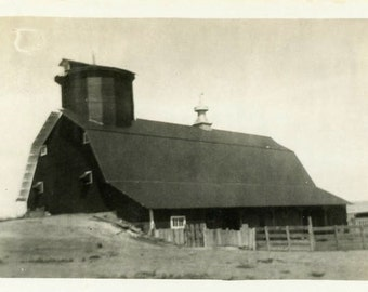 "Vintage Photo ""Old McDonald Had a Farm"" Wood Barn Snapshot Old Antique Photo Black & White Photograph Found Paper Ephemera Vernacular - 66"