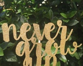 Never Grow Up // Baby Shower // Birthday // Cake Topper // Peter Pan // Tinkerbell