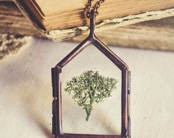 my home is the forest necklace