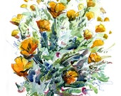 California Poppies- fine art print of a watercolor sketch