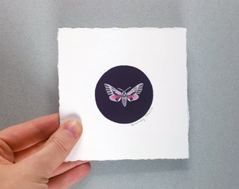 Pink Moth (Specialty Miniature Painting)