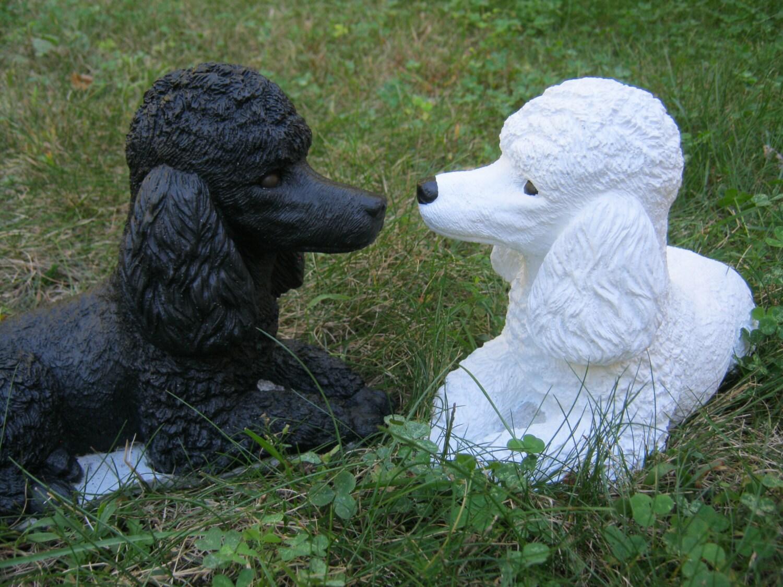 Poodle Statue Black Poodle White Poodle Cement Garden
