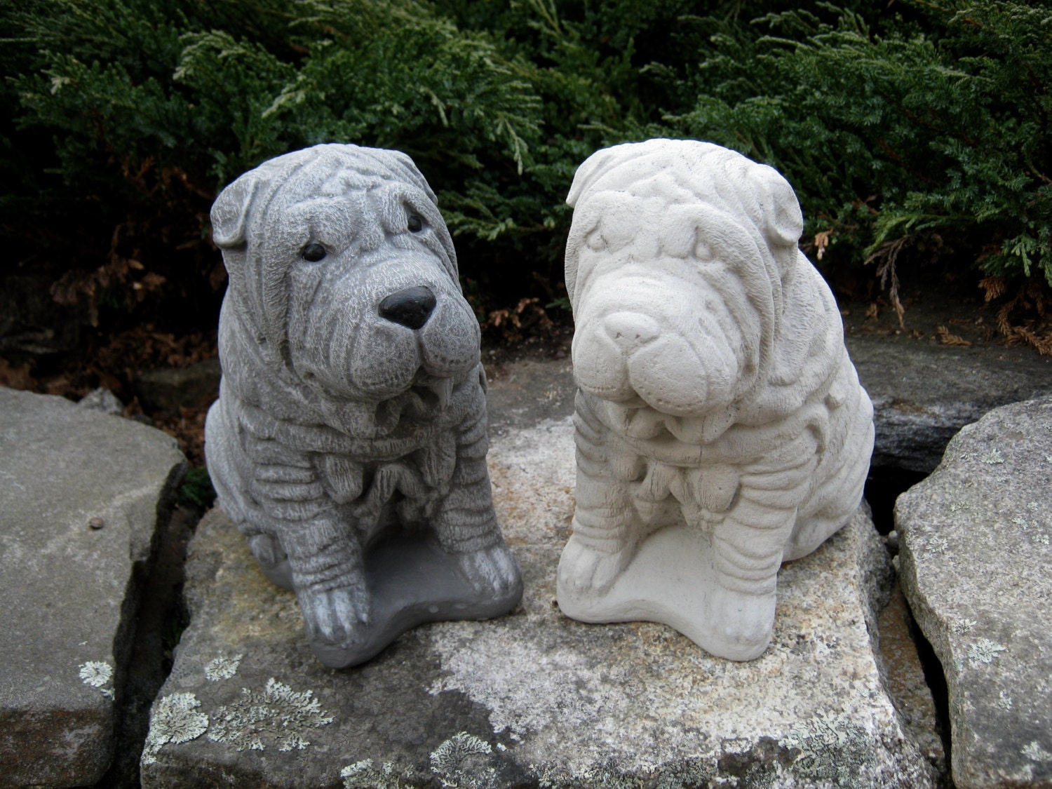 Sharpei Dog Statue Concrete Dog Statues Pet Memorial Head. Patio Heating.com. Covered Patio Ideas. Patio Designs Essex. Decorating Patio Area. Outdoor Patio Cooler. Flagstone Patio Next To House. Porch And Patio Images. Patio Landscaping Ideas Photos