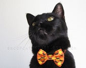 SALE!  Cat Bow Tie - Gone Batty - Halloween Cat Accessory