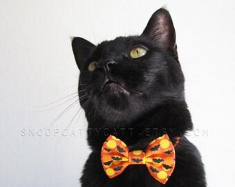 SALE!  Cat Bow Tie - Gone Batty - Halloween Cat Accessory