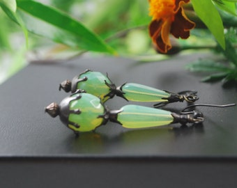 SALE***Eye catching light mint opal czech glass earrings with black matte findings, srajd