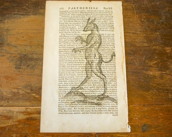"Authentic 1676 Book Page with Mythical Creature Print Vintage Halloween Decoration Odd, Strange, Bizarre Image 12-1/2"" by 7-1/2"" - P07"