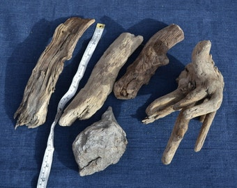 5 Piece Hand shaped sculptural Alaskan driftwood lot, logs sticks branches, art crafts display jewelry nautical home decor terrarium supply