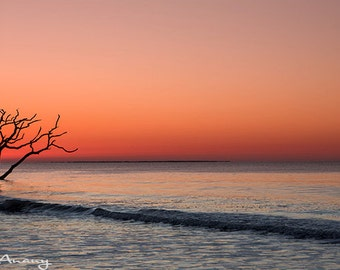 Landscape Photography, Botany Bay At Sunrise, Panorama Wall Art, Nature Photograph, Home or Office Decor, Archival Print, Orange, Grey