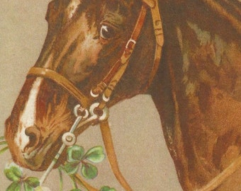 Unsigned Clovers Trio - 1900s Bridled Horses Postcards - An AHV Archival Editions © Set of Three from the Originals