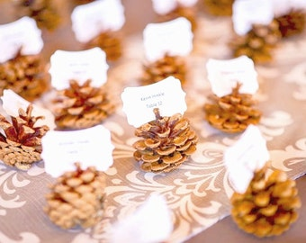 Pine Cone Escort Cards, Rustic Wedding Place Card Favors to Decorate your Wedding Table, Eco Friendly Nature Inspired - 50