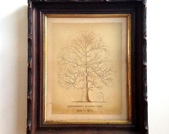 Antique Family Tree, Descendant of Henry Peck, 1638-1874, Hand Drawn Family Tree, Antique Genealogy, Wood Framed Family Tree