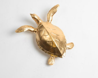 The Gilded Turtle - White Faux Taxidermy Wall Decor - White Faux Taxidermy  - Mounted Turtle Body Decorations - Faux Taxidermy