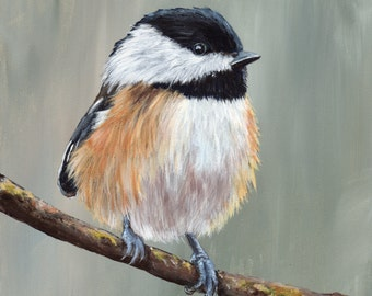 Black Capped Chickadee Bird Art Wildlife  SFA  - Original hand painted acrylic bird painting by Australian Artist Janet M Graham