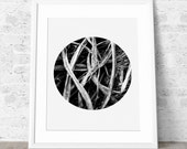 Nordic Art, Printable Art, Nature Photo, Bedroom decor, Modern Graphic Poster, Black and white, Minimalist Print .
