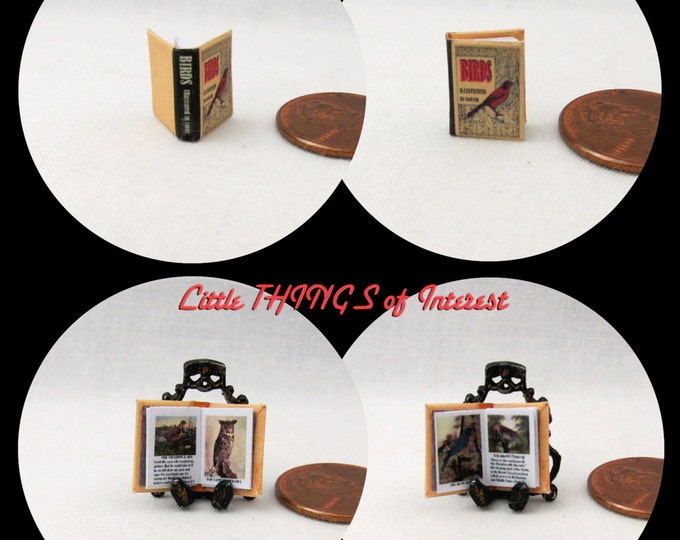1:24 Scale BIRDS ILLUSTRATED Miniature Book Dollhouse Color Illustrated Book