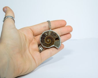FREE SHIPPING  Ammonite Fossil Necklace