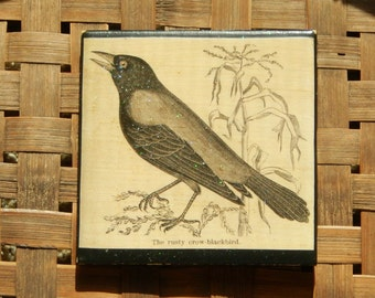 Ceramic Tile - The Rusty Crow
