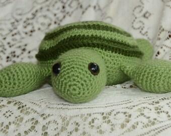 Custom Timmy the Turtle