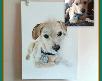 Custom portrait/ pet drawing/ portrait from photo/ dog drawing/ memorial pet/ gift idea