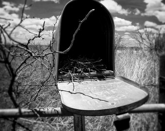 Mallet Ranch Old Mailbox - Rural Art Print - Mailbox Photo