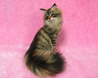 Needle Felted Beautiful Maine Coon: Needle Felt Cat, Needle Felting