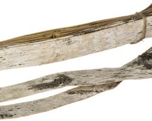 Birch BARK Strips for Rustic Event, Wedding, Holiday or Home Decor in a Bundle of 10 Sheets