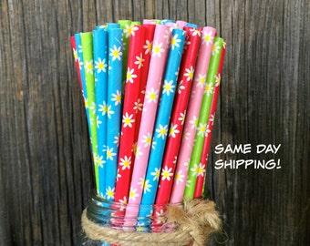 100 Pink, Blue, Green and Red Daisy Paper Straws  - Picnic, Birthday, Baby Shower Supply, Free Shipping!