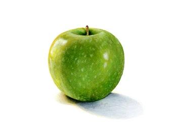 Green Apple Illustration // Watercolor Food// Botanical illustration, scientific illustration, realistic art