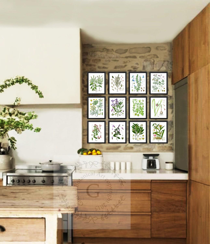 Kitchen Decor Culinary Art Gift Herbs Botanical Art Herb Art
