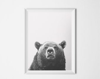 Bear Print, Forest Animal Poster, Grizzly Bear INSTANT DOWNLOAD, Black and White Photography 16 x 20 Poster, Animal Printable Art Brown Bear