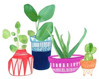 Clay Planters Archival Print by Lindsay Gardner