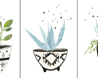 "Three Print Set: ""Succulents No. 1, 2 + 3"" Archival Prints by Lindsay Gardner"