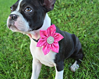 Dog Collar flower, Dog collar, Flower for dog, clearance Collar Flower, Dog Collar Flower, Dog Bow, Kanzashi Flower, Dog Wedding Flower, dog
