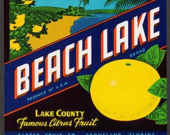 Vintage Fruit Crate Label, Beach Lake Brand, Groveland Florida