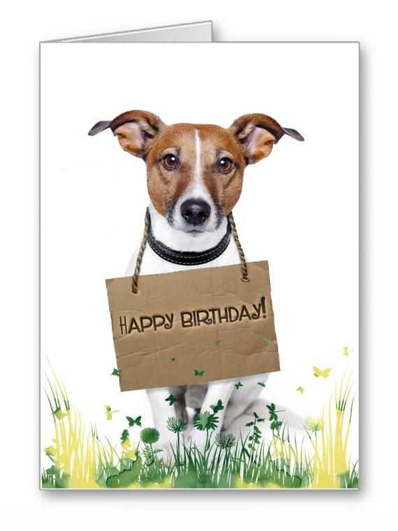Greetings CardHappy Birthday by TheLazyCatStudio on Etsy – Happy Birthday Cards with Dogs